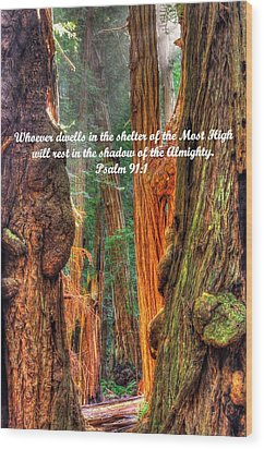Rest In The Shadow Of The Almighty - Psalm 91.1 - From Sunlight Beams Into The Grove At Muir Woods Wood Print by Michael Mazaika