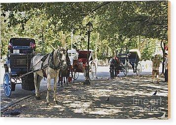 Rest Stop - Central Park Wood Print