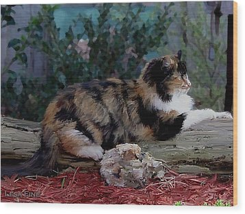 Resting Calico Cat Wood Print by Lesa Fine