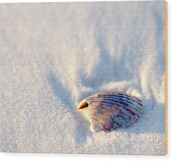 Resting Wood Print by Liz Masoner
