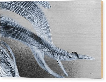 Wood Print featuring the photograph Resting On A Feather by Bob Orsillo