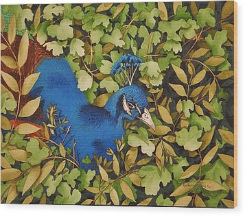 Resting Peacock Wood Print by Katherine Young-Beck