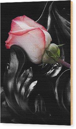 Resting Rose Wood Print by Tom Mc Nemar