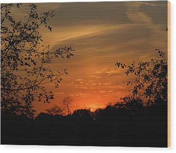 Wood Print featuring the photograph Resting Sun by Teresa Schomig