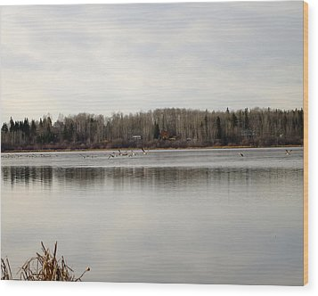 Restless Wood Print