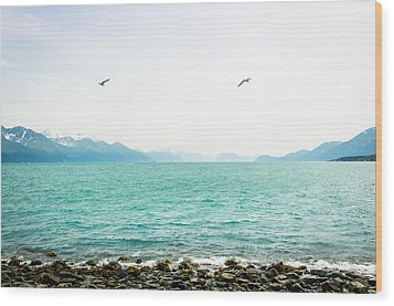 Resurrection Bay With Sea Gulls Wood Print