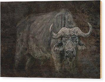 Retired General Wood Print by Mike Gaudaur