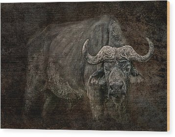 Retired General Wood Print