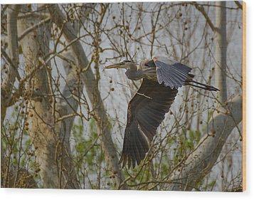 Return Flight Wood Print