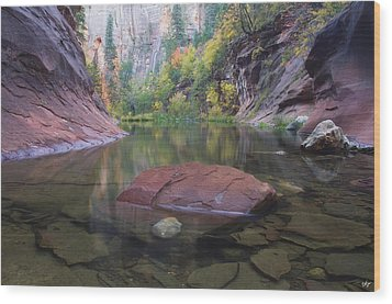 Revisited Wood Print by Peter Coskun