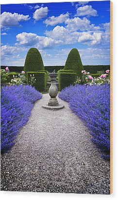 Rhapsody In Blue Wood Print by Meirion Matthias