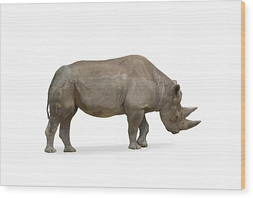 Wood Print featuring the photograph Rhinoceros by Charles Beeler