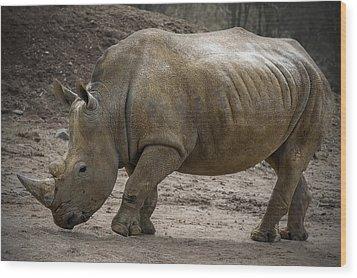 Rhinoceros Wood Print by Svetlana Sewell