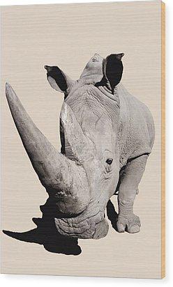 Rhinocerosafrica Wood Print by Thomas Kitchin & Victoria Hurst