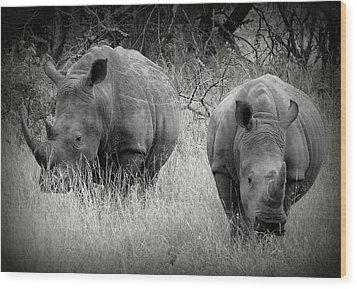 Rhinos Wood Print by Ramona Johnston