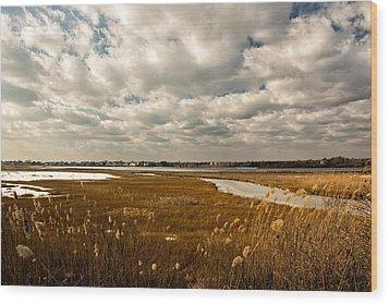 Rhode Island Marshes 1 Wood Print by Nancy De Flon