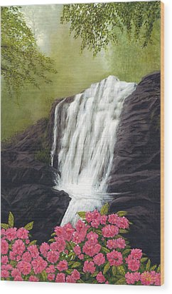 Rhodedendron Falls Wood Print