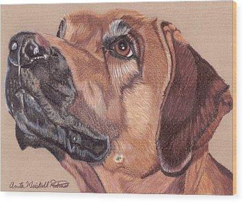 Rhodesian Ridgeback Vignette Wood Print