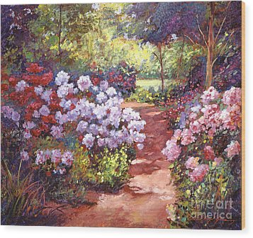 Rhododendron Stroll Wood Print by David Lloyd Glover