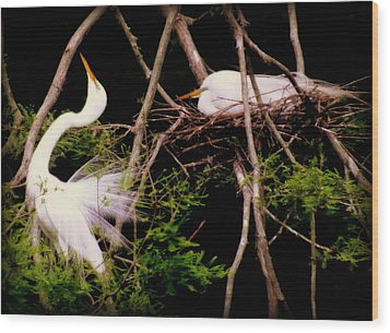 Rhythm Of Nature Wood Print by Karen Wiles