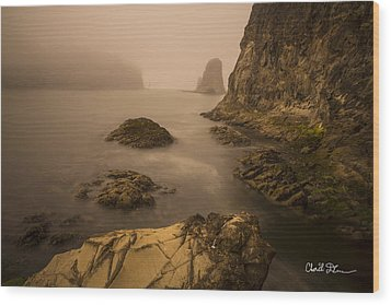 Rialto Beach Rocks Wood Print