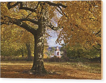Richmond Autumn Wood Print by Maj Seda