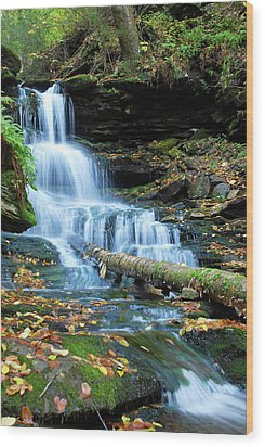 Ricketts Glen Hidden Waterfall Wood Print
