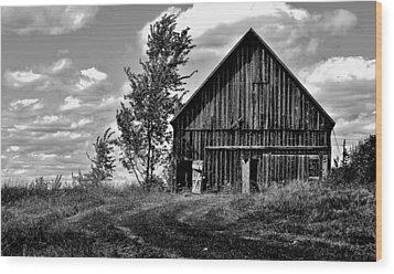 Ridge - Sentinel Winds - Blow - Canada Wood Print