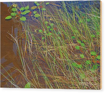 Ridges Illusion Wood Print by Jim Rossol