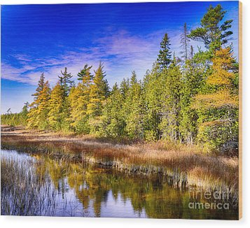 Ridges Repose Wood Print by Jim Rossol