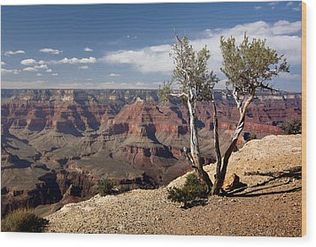 Rim Of The Grand Canyon Wood Print