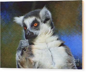 Wood Print featuring the photograph Ring-tailed Lemur by Lisa L Silva