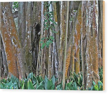 Ringling Trees 1 Wood Print by Maria Huntley