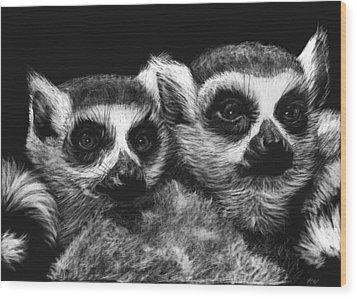 Ringtail Lemurs Wood Print by Heather Ward