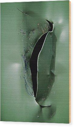 Rip Wood Print by Odd Jeppesen