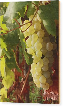 Ripe Grapes Wood Print by Alex Sukonkin