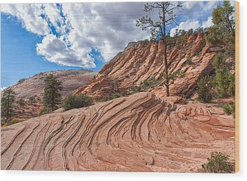 Wood Print featuring the photograph Rippled Rock At Zion National Park by John M Bailey