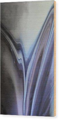 Rippling Color Waves Against Concentric Ellipses Wood Print by Sandra Pena de Ortiz