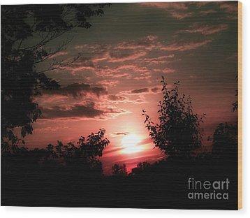 Rise An Shine IIi Wood Print by Scott B Bennett