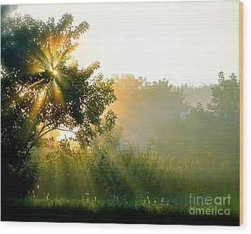 Rise And Shine Wood Print by Sue Stefanowicz