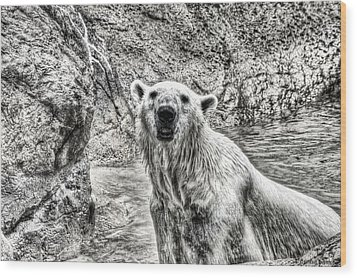 Wood Print featuring the photograph Rising From The Water by Dennis Baswell