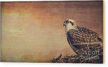 Rising Sun Wood Print by Edward Fielding