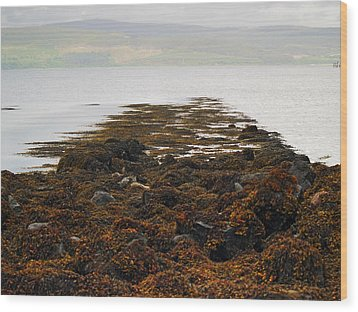 Rising Tide Wood Print by Steve Watson