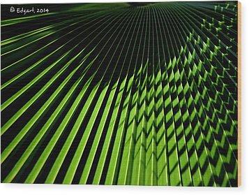 Ritmos Wood Print by Edgar Torres