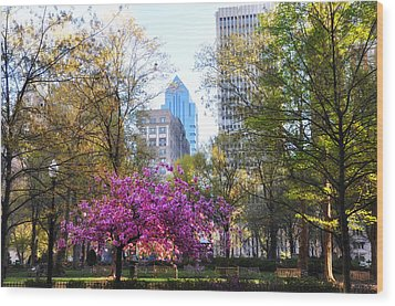Rittenhouse Square In Springtime Wood Print by Bill Cannon