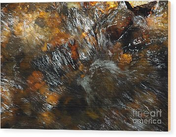 River Color Wood Print by Allen Carroll