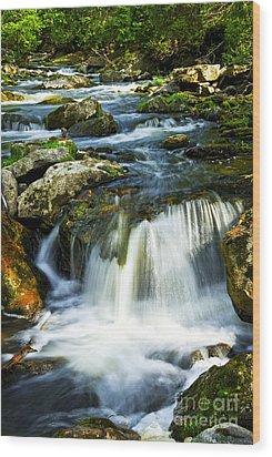 River Flowing Through Woods Wood Print by Elena Elisseeva