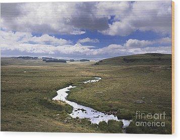 River In A Landscape Wood Print by Bernard Jaubert