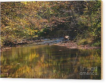 Wood Print featuring the photograph River In Autumn by Lisa L Silva