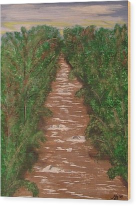 River In Tennessee Wood Print by Melanie Blankenship